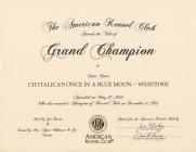 Grand Champion Certificate
