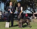 Santa Barbara Kennel Club BOW