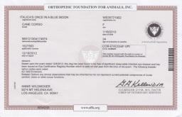 Nasa OFA eye certificate