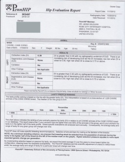 Nasa PennHip certificate
