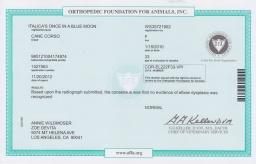 Nasa OFA elbow certificate