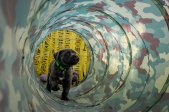Nasa Pups-234