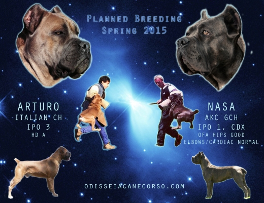 planned breeding