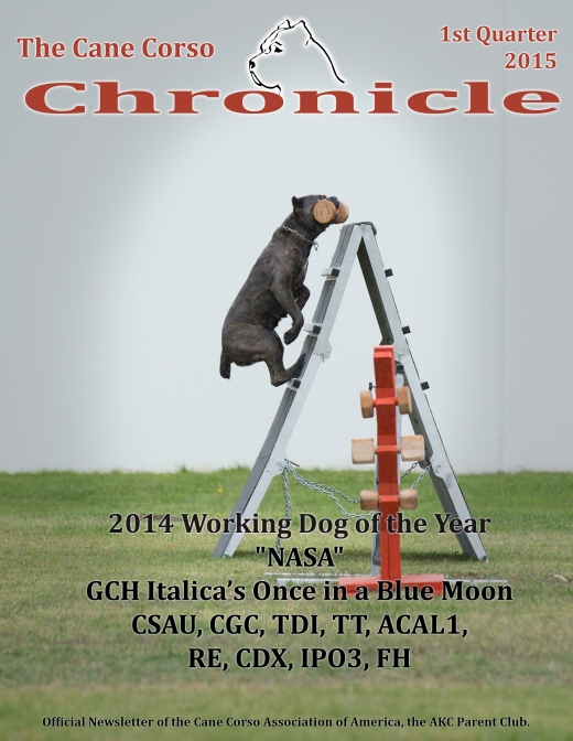 CCChronicle2015Quarter1FrontCover
